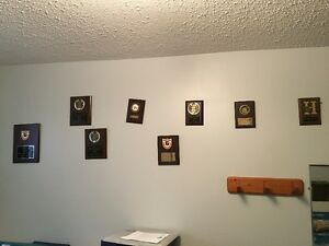 Many new actual Sports Trophies, Plaques and Awards Kitchener / Waterloo Kitchener Area image 6