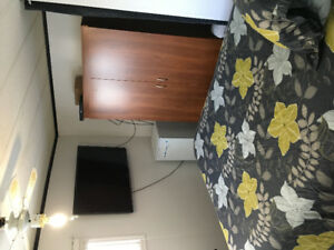Large, quiet room with private entrance and no damage deposit.