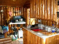 Cabin for sale, Deep Hole, Grandy's River