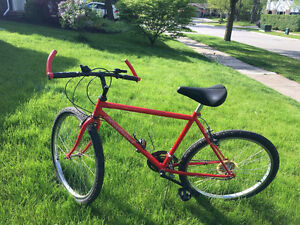 Red Raleigh mountain bike with frame size XL