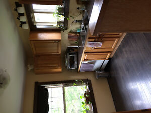 RIVERVIEW- DOGS WELCOME! - 5 MIN FROM RIVERVIEW MALL