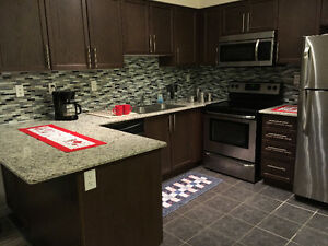 Available in Jan.: Luxury 2 bedroom apartment, GREAT Amenities!