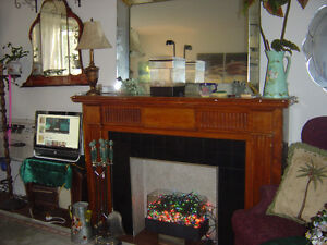 Fireplace and Antique Mirror