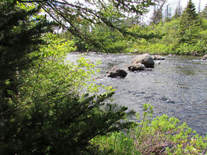 12 ACRE RIVERFRONT ESTATE…181 SALMONIER LINE, HOLYROOD. St. John's Newfoundland image 18