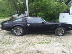 1980 Pontiac Trans Ams