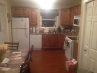 2 Bedroom all Inclusive apartment (H&L included Cable +Internet)