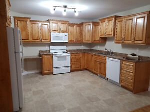 Affordable Spacious Apartment for rent