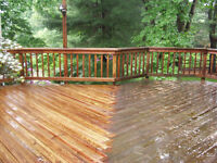 Professional Pressure Washing, Affordable Prices!