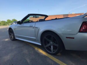 2000 Ford Mustang GT Convertible V8