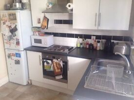 Spacious Double Room for Rent - 80m to Turnpike Lane Tube Station!