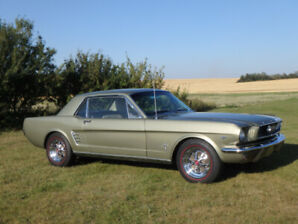 1966 Mustang Numbers Matching Pony Edition Coupe