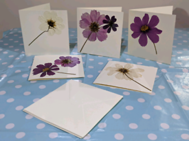 Hand made pressed cosmos flower greetings card set with envelopes