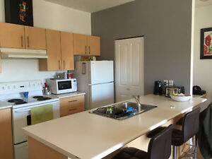 Furnished 2BR/2B Apartment