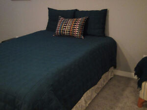 Quilted Bedspread, Bedskirt, 2 Pillowshams, 1 Accent Pillow Kitchener / Waterloo Kitchener Area image 3