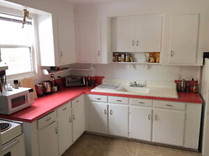 Subletting Spacious Apartment - available now until August 31st
