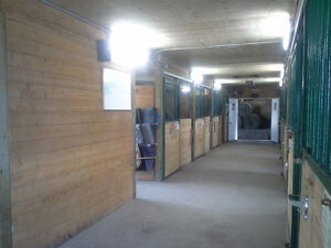 Looking for horse farm near Montreal ? potential income 7500/mo Belleville Belleville Area image 5