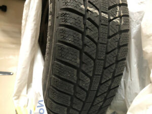 Winter tires and Rims 15 inch Brand Evergreen EW62