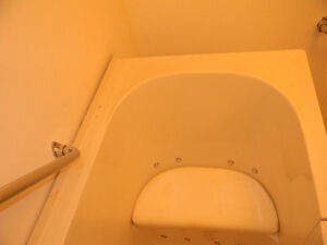 walk-in Jacuzzi handicap tub Peterborough Peterborough Area image 4