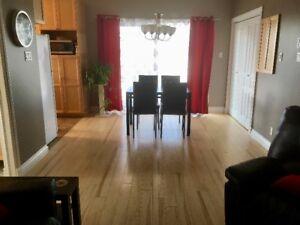 Appartement 1 chambre plus 1 chambre / bureau bonus