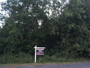 Vacant lot for Sale on Goodfellow Lane! Belleville Belleville Area image 1