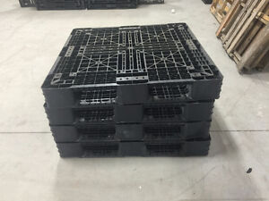 36 Plastic Pallets and 12 wooden ones