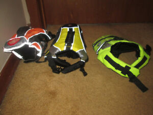 1-2 or 3 small reflective pet life jackets