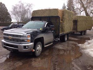 Large Squares, Hay For Sale