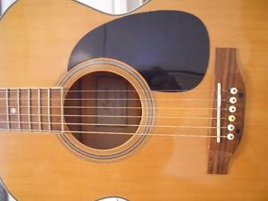 Magnum 6 String Acoustic Kingston Kingston Area image 7