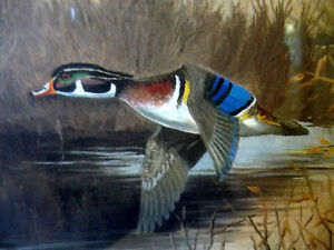 "Hand Signed and Numbered, Maynard Reece ""Wood Ducks"" Lithograph Stratford Kitchener Area image 8"