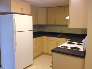 2 Bedroom Basement Suit - Southeast  Edmonton