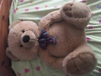 Free large teddy