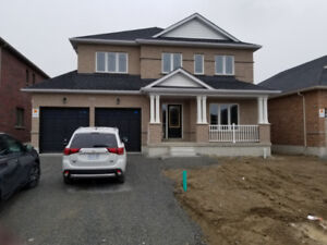 Full House For RENT: 37 Pollock Ave, Brock Ontario L0K1A0