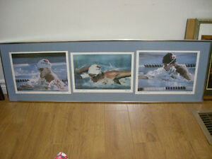 Olympic Gold Medalist Swimming Picture
