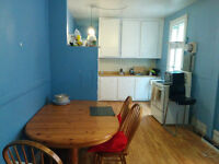 gorgeous 2 bedroom in the plateau