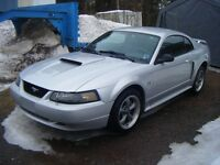 Fun Low miles Summer Car  Mustang GT