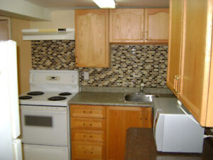 Spacious One Bedroom + Den Basement Apartment for Rent July 1