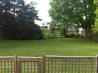 Efficient Century Home Avail Aug 1st in Picton $1350 +Utilities