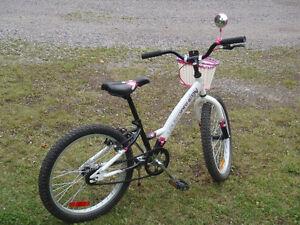 vélo Louis Garneau Saguenay Saguenay-Lac-Saint-Jean image 2