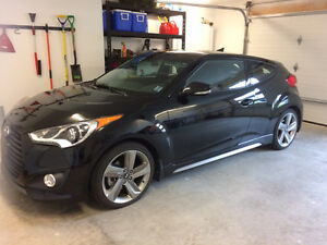 2015 Hyundai Veloster Turbo-Every available opiton -Moving Sale