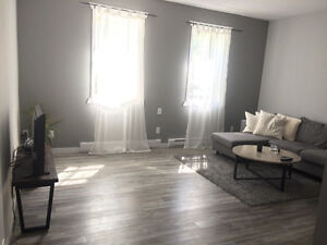 $820 fully renovated 1BDRM Apartment in Wolseley