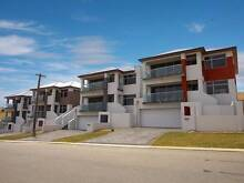 Queen bedroom available in huge house, 2 minute walk to the beach Scarborough Stirling Area Preview