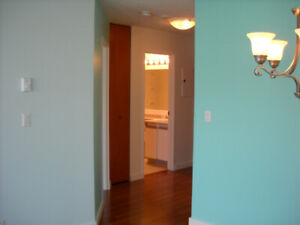 $1650 1 BR Downtown Condo avail May 1