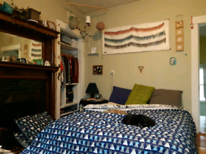 Large Charming Bedroom in 3BR Apartment - Close to Commons