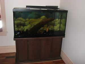90 Gallon Aquarium full set-up with fish