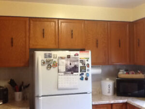 Solid wood kitchen cabinets with sink and Faust