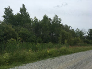 Large treed lot available near Black River