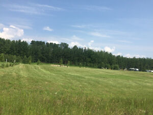 Lake Lot in Meadow Land at Lac De Isles For Sale