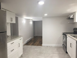 2 Bedroom Newly Renovated Lower Level Unit