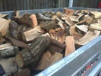 Trailer load of Hardwood seasoned firewood logs