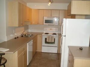 Apartment in Downtown - 2 Bedroom Apartment for Rent